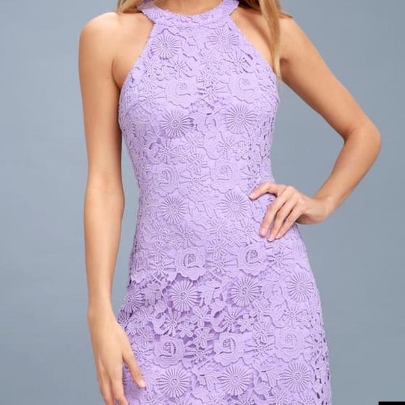 Love Poem Lavender Lace Dress Nwt